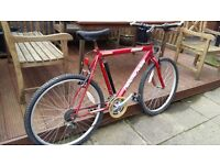 Adult Mountain Bike - Red 'Destroyer'. Large Frame & wheels
