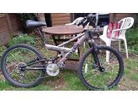 Bike Giant girl Acton Ealing £45