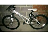 Ladies adventure bike