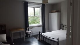 Lovely, large room to rent in Victorian terrace house
