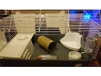 Guinea Pig Cage in Excellent Condition with ooodles of stuff ! (DN1 2BA Area)