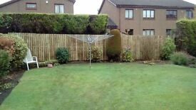 davie & son fencing all fencing & gates suplied and fitted or repaired