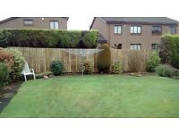 davie & son fencing all fencing & gates erected or repaired