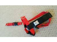 Dog car harness - small