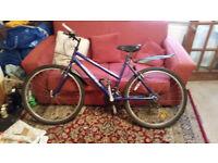 Small Adult/Teenager Raleigh Mountain Bike