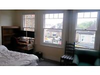 Large, sunny double room in professional, friendly flatshare
