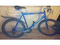 Raleigh Manta Ray bike