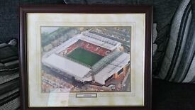 LFC PICTURE OF LFC GROUND IN BIG FRAME
