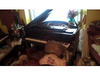 Grand Piano (Cheap)