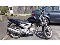 Honda CBF 250cc for sale