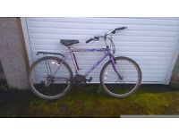2 bicycles for free one folding other standard collection from East kilbride