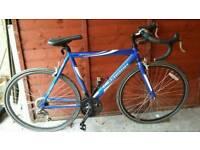 Vitesse Sprint Unisex Road Bike