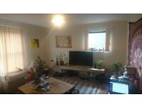 Warm, central flat with easy-going housemate - ALL BILLS & CT INCLUDED