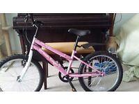 "Girls 20"" Wheel Mountain Style Bicycle"