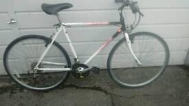 Raleigh Hybrid Cycle