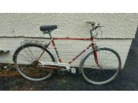 Puchs elegance classic bicycle project restore
