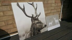 Two deer canvas pictures.