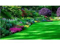 gardening maintenance services all year round gardening work carried out