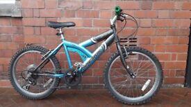 Children's Mountain Bike (Oxford)