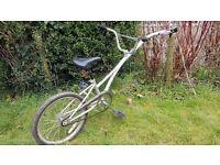 Trailer bike for child