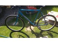 15 speed, 18 inch frame bike for sale.