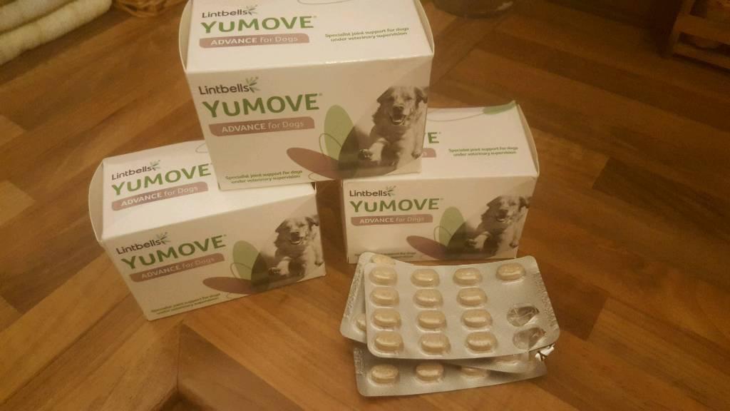 Yumove advance