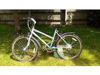Girls Raleigh Camero Mountain Bike