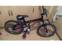 Apollo boogie bmx bike