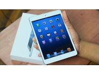 Apple IPad Mini Silver 16GB Silver Wifi With Warranty