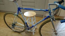 Colnago Gents Racing Bike Immaculate Condition