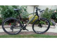 Specialized Rockhopper expert. 29er