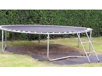 10ft children trampoline with ladder free to collect. bought new one hence reason for giving it out.