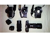 Collection of film cameras and lenses.