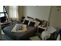 Lovely room to rent