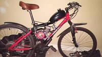 skyhawk motorise bike