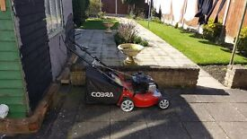 Cobra Self Propelled Petrol Lawn Mower, Model: M46SPB, good for Large Lawns