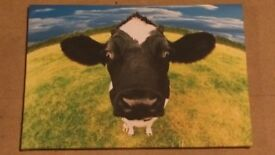 Cow canvas picture