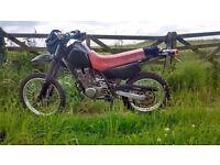 Yamaha XT 350 MOT 12 MONTH