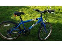 Raleigh Gecko Boys bike