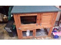 Guinea pig outdoor hutch