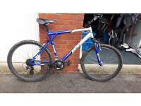GT Mountain Bike for Sale