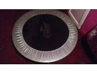 Mini Trampoline (House Clearance)