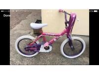 Dunlop princesses bike