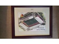 Watford football club stadium limited edition framed photo