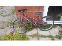 "Raleigh Kids Bike 14.5"" frame 24"" good condition"