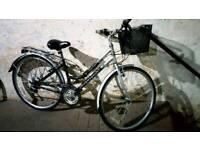 Ladies Hybrid City Touring Bike 🚲 Cotswold
