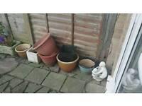 7 garden plant pots
