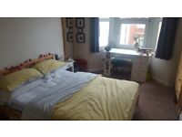 Spare double room in lovely house off Gloucester Road