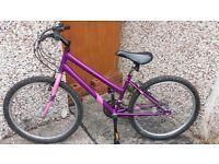 Apollo teenage/ adult bike