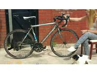 Viking Race Bike/24 speed